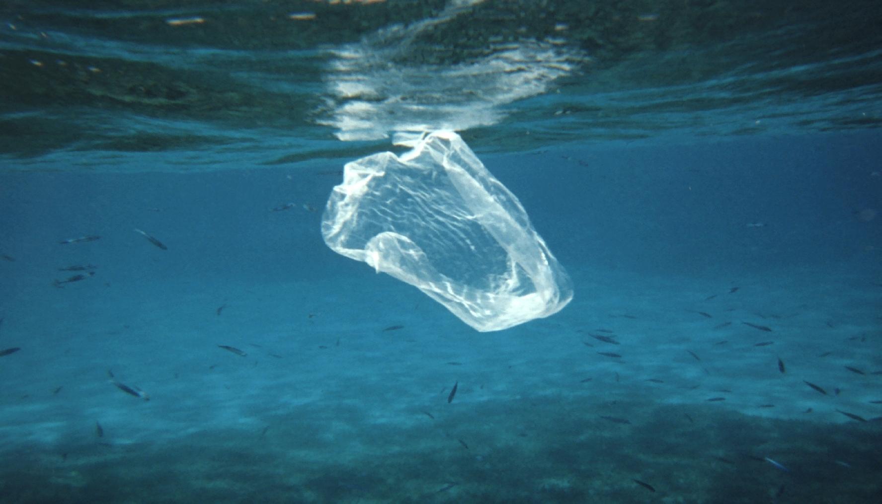 Bolsas de plástico. Un paso más.
